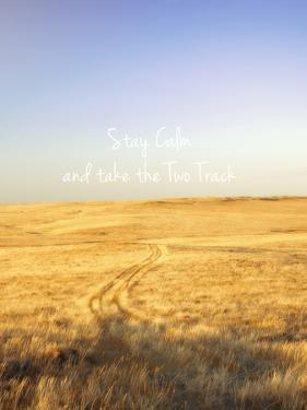 Stay Calm and Take the Two Track by Amanda Lee Smith