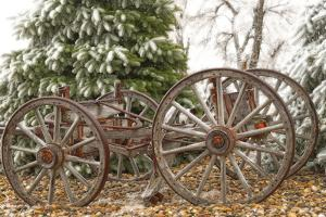 Wagon in Winter by Amanda Lee Smith