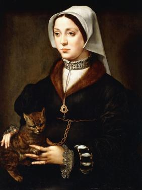 Portrait of a Lady, Three-Quarter-Length, Wearing Dark Costume, Holding a Cat by Ambrosius Benson