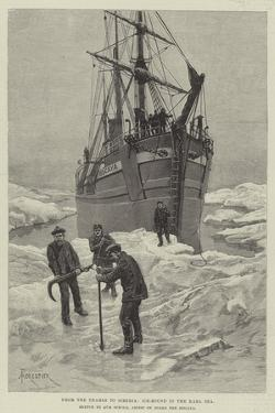 From the Thames to Siberia, Ice-Bound in the Kara Sea by Amedee Forestier