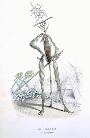 A Country Stroller, from 'L'Empire Des Legumes, Memoires De Curcurbitus'