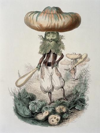 Cucurbitus, c.1861