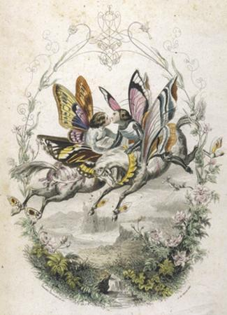 Lepidoptera Ride, Kiss