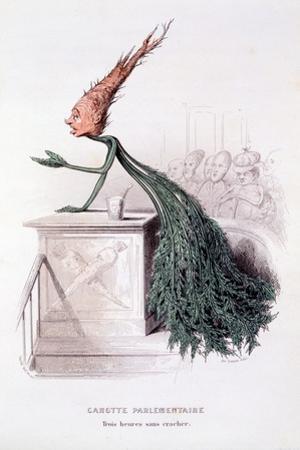 Parliamentary Carrot, Illustration from 'L'Empire Des Legumes Memoires De Curcubitus', Published…