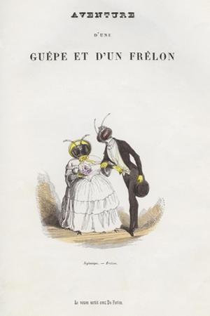 Xylocope-Frelon Illustration of Newlywed Insect Couple