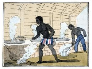 Boiling and Cooling the Sugar, 1826 by Amelia Alderson Opie