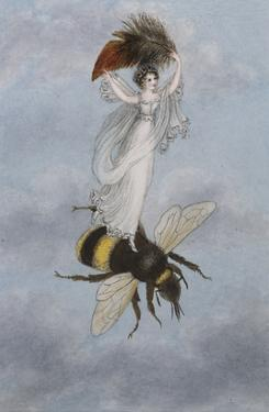 A Fairy Carrying a Feather Standing on a Bee by Amelia Jane Murray