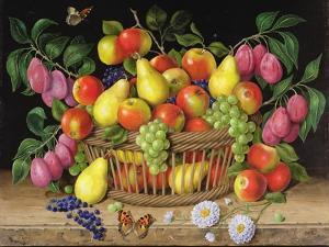 Apples, Pears, Grapes and Plums, 1999 by Amelia Kleiser