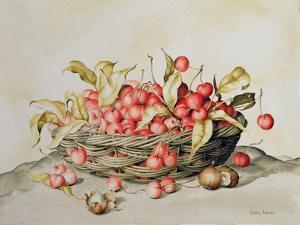 Basket of Cherries, 1998 by Amelia Kleiser