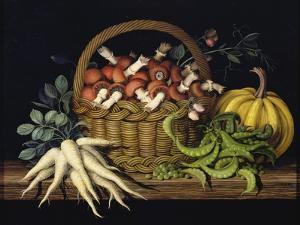 Basket of Mushrooms, 1997 by Amelia Kleiser