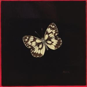 Marbled White Butterfly, 2000 by Amelia Kleiser