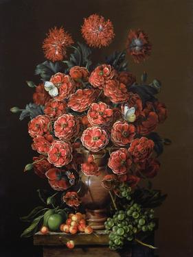 Poppies in a Terracotta Vase, 2000 by Amelia Kleiser