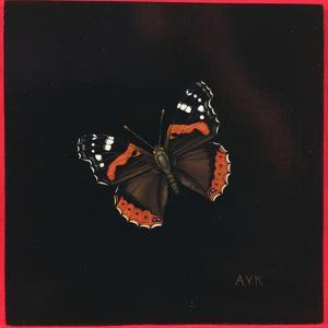 Red Admiral Butterfly, 2001 by Amelia Kleiser