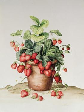 Strawberries in a Pot, 1998 by Amelia Kleiser