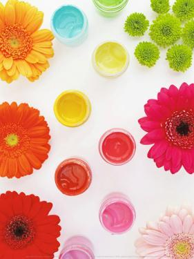 Flowers and Colors by Amelie Vuillon