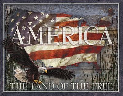 America - Land of Free