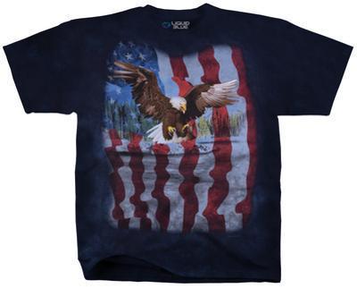 American Bird Of Prey