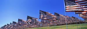 American Flags in Memory of 9/11, Pepperdine University, Malibu, California, USA