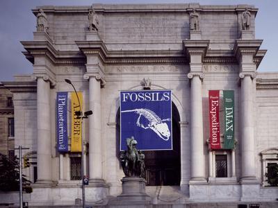 https://imgc.allpostersimages.com/img/posters/american-museum-of-natural-history_u-L-PWBCA80.jpg?p=0