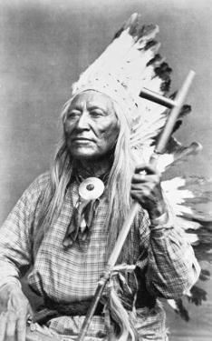 Chief Washakie by American Photographer