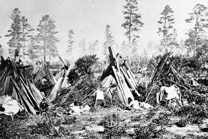 Yosemite Indian Huts, C.1870s by American Photographer