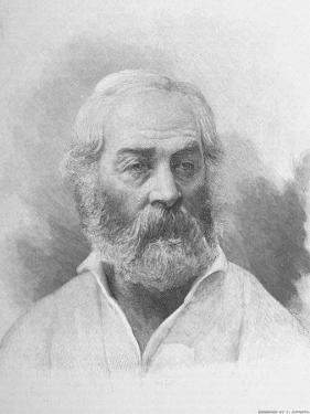 American Poet Walt Whitman Above Reproduction of Signature and Notation Reading