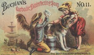 Advertisement for Buchan's Carbolic Disinfecting Soap No. 11, C.1880 by American School