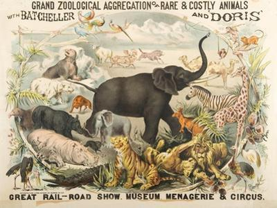 Grand Zoological Aggregation of Rare and Costly Animals with Batcheller and Doris by American School
