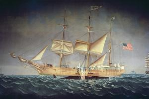 The 'Catalpa' with Whale by American School