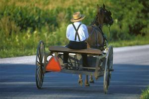 Amish driving a horse-drawn cart, Pennsylvania, USA