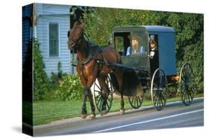 Amish in a carriage, Pennsylvania, USA