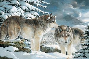 Wolf Watch by Amneris Fernandez