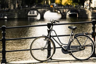 https://imgc.allpostersimages.com/img/posters/amsterdam-gray-bicycle_u-L-Q11UPCF0.jpg?p=0