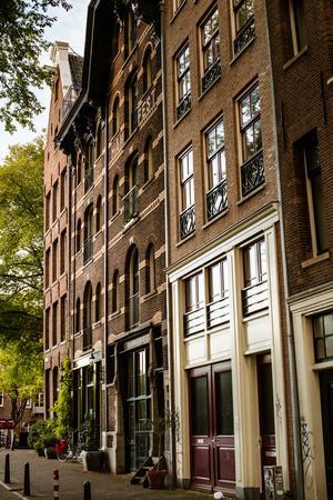 https://imgc.allpostersimages.com/img/posters/amsterdam-neighborhood-ii_u-L-Q11ULPC0.jpg?p=0