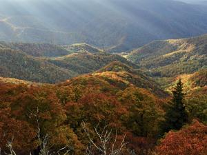 Blue Ridge Mountains in Autumn Hues with Rays of Sunlight by Amy & Al White & Petteway