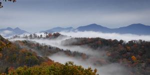 Clouds Fill a Mountain Valley That Is Full of Autumn Color by Amy & Al White & Petteway