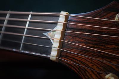 Close Up of the Nut on an Acoustic Guitar by Amy and Al White and Petteway