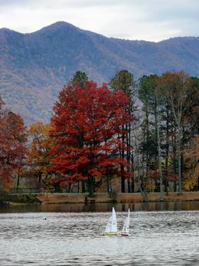 Toy Sailboats in a Lake in a Mountain Valley in Autumn by Amy and Al White and Petteway