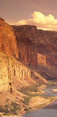 Grand Canyon National Park, CO River, AZ by Amy And Chuck Wiley/wales