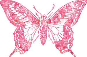 Butterfly 2 Pink Watercolor by Amy Brinkman