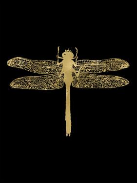 Dragonfly Golden Black by Amy Brinkman