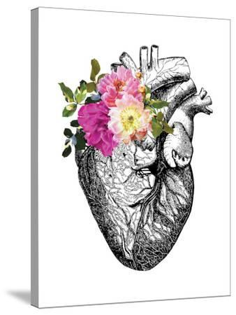 Heart Anatomical Floral by Amy Brinkman