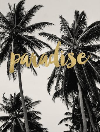 Paradise Palm Trees Golden by Amy Brinkman