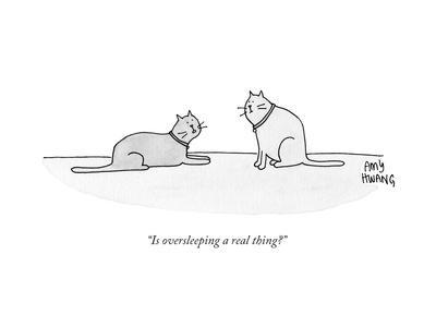"""""""Is oversleeping a real thing?""""  - New Yorker Cartoon"""