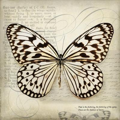 Butterflies Script III by Amy Melious
