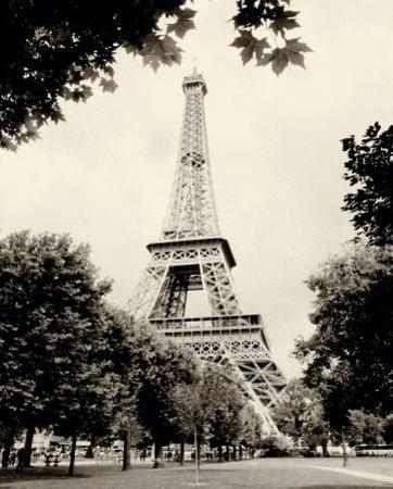Eiffel Tower I by Amy Melious