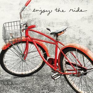 Enjoy the Ride by Amy Melious