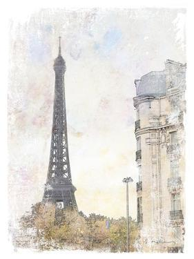 French Illustration I by Amy Melious