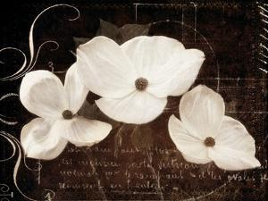 Garden Love Letter I by Amy Melious