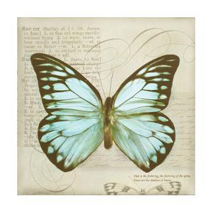 Vintage Butterfly II by Amy Melious